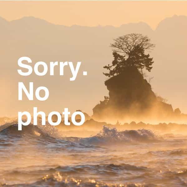 里の湯 雷鳥イメージ写真その1